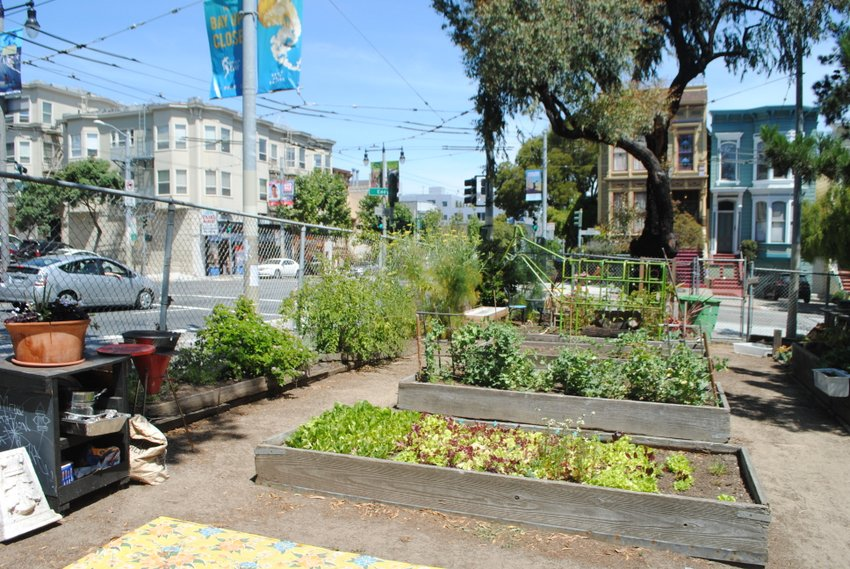 Flourishing urban garden sprouts in San Francisco churchyard ... on home space, garage space, living room space, community pool, community work space, art gallery space, cricut design space, community diy space, community park space,