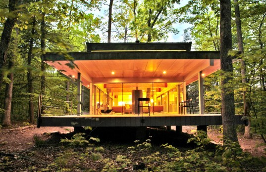 Stunning West Virginia Home Showcases Trees as Living Works of Art