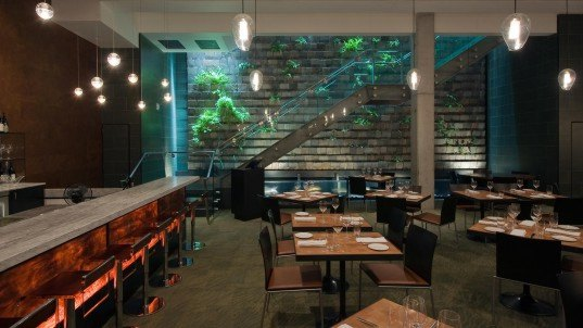 lundberg design, moss room, renzo piano, restaurant design, lundberg design moss room, olle lundberg, sustainable restaurant, living wall, green wall, planted wall, south asia river fish, succulents, ferns