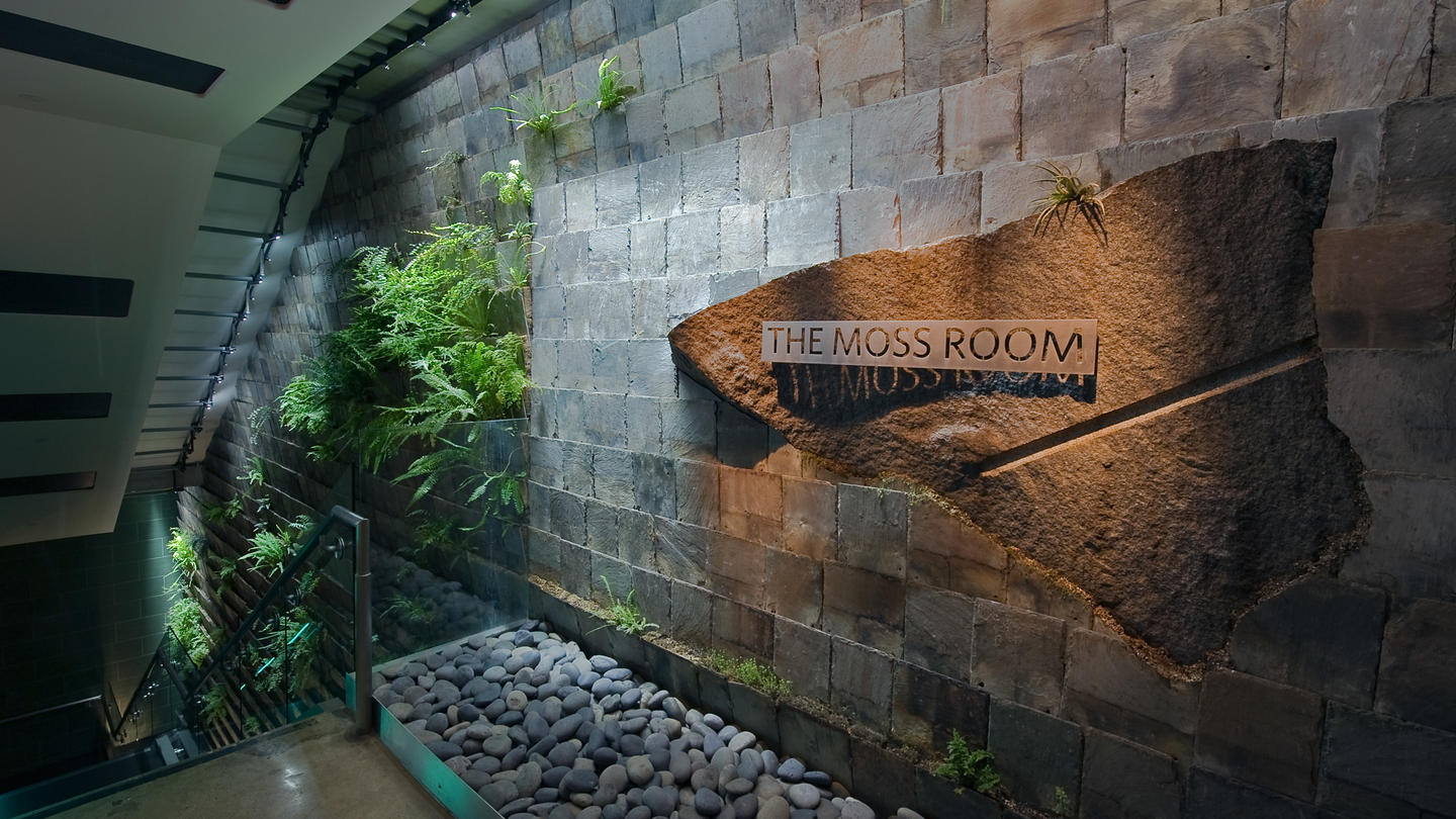 Lundberg design 39 s moss room adds a dramatic breath of for Moss building design