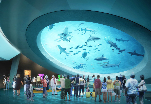 New Science Museum Miami >> Miami S New Science Museum To Feature An Incredible 500 000 Gallon