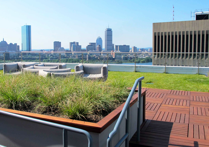 Need a Rooftop Farm? Call This Company