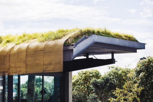 The Cloak: Fearon Hay Architects Install a Maori-Inspired Green Roof at Auckland International Airport