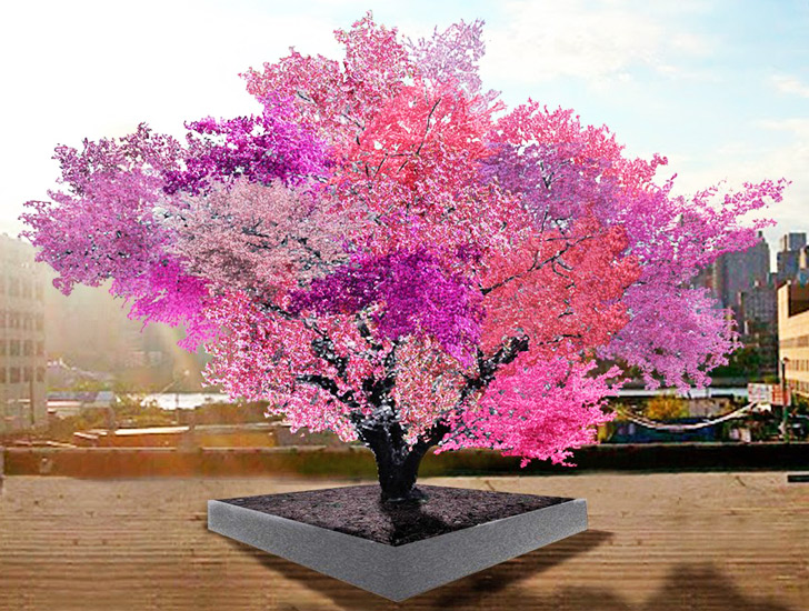 This Amazing Tree Grows 40 Diffe Kinds Of Fruit Inhabitat Green Design Innovation Architecture Building