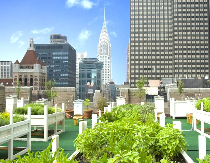 8 Gorgeous Urban Rooftop Gardens Hidden Across NYC | Inhabitat   Green  Design, Innovation, Architecture, Green Building