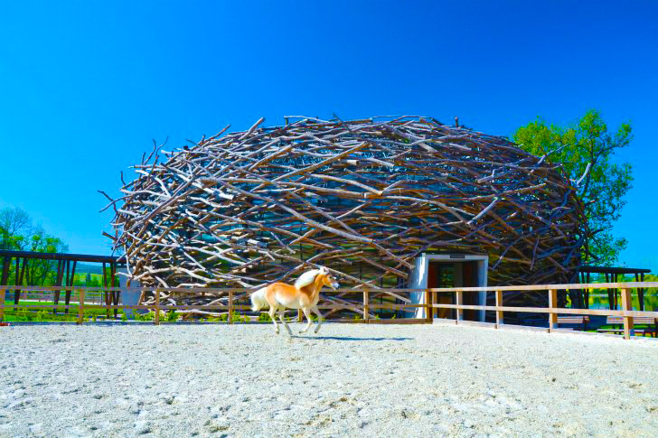 4 Human-Sized Nest Designs are Perfect Examples of ...