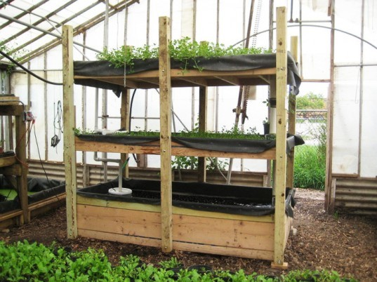 If Youu0027re Inspired To Try Out An Aquaponic System Instead Of A Vegetable  Garden In Your Backyard This Summer, This Guide Will Serve As An Overview,  ...