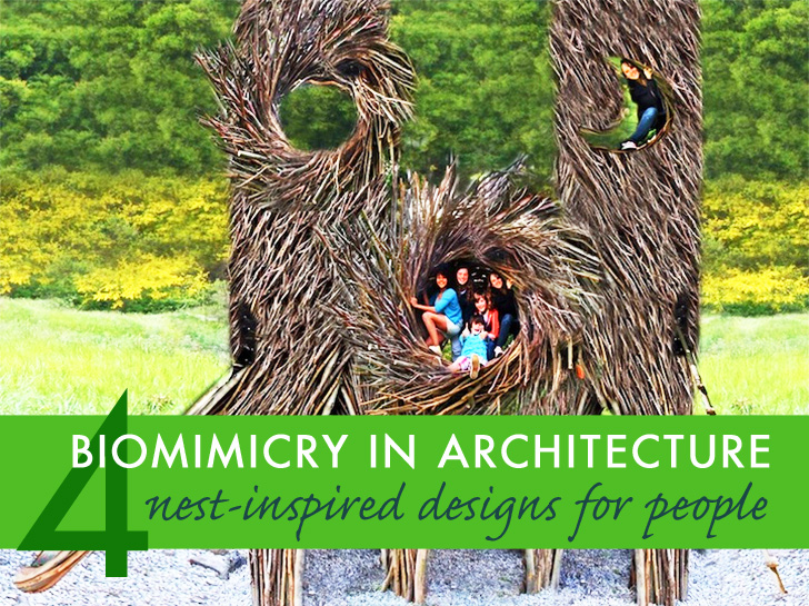 4 Human Sized Nest Designs Are Perfect Examples Of
