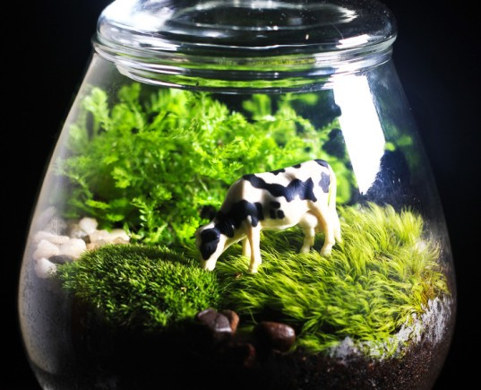 Terrarium, terrariums, glass bowl, glass bowl terrariums, DIY, How-to, how to, how to make a terrarium, make your own terrarium, moss, stones, rocks, sphagnum, miniatures, scenes, animal terrarium