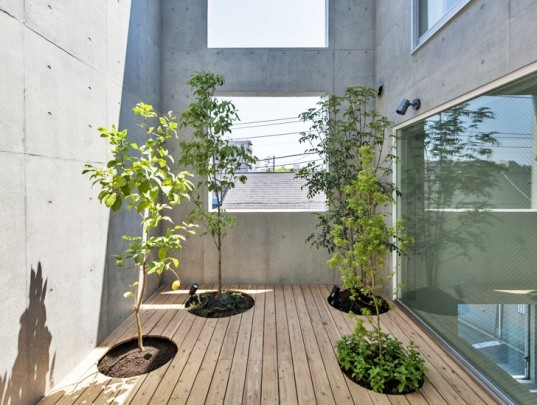 House-K Tokyo, interior gardens, residential architecture Tokyo, Japanese architects, K2YT architecture, Japanese architecture, natural light, exposed concrete house