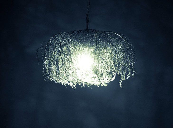 Organic Shadow Chandeliers Create a Woodland Ambience in Any Room ...