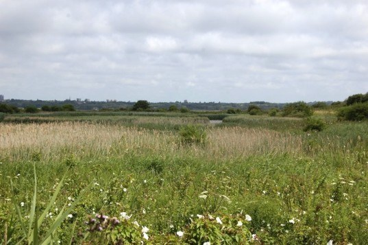 Port Sunlight River Park, brownfields, reader submitted content, The land trust, Newlands, Bromborough dock, Gillespies, landscape architecture, reclaimed brownfield, community woodland, remediated brownfield, former landfill, landfill turned park, landfill, wirral,
