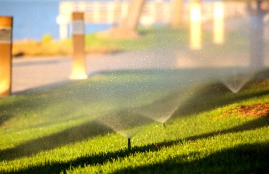 Antibiotic-Resistant Super-Germs Found in Chinese Parks Irrigated With Recycled Water