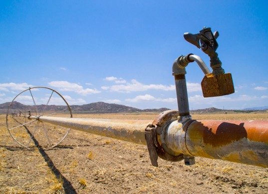 Wealthy Californians are Circumventing the Drought by Trucking in Water