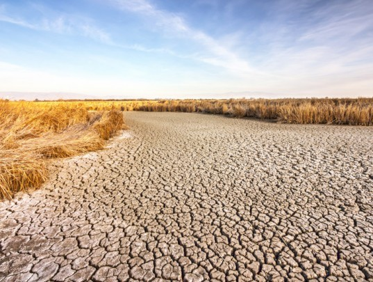 Ten solutions to California's drought