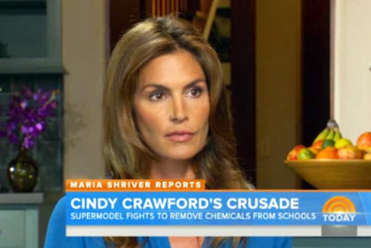 Concerned Supermodel Cindy Crawford Pulls Kids Out of Toxic School