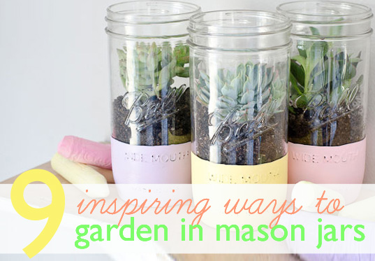 9 Fun and Inspiring Ways to Garden in Mason Jars