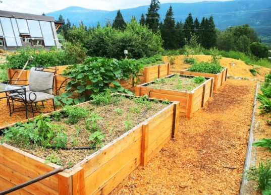 Darfield-Raised-Beds