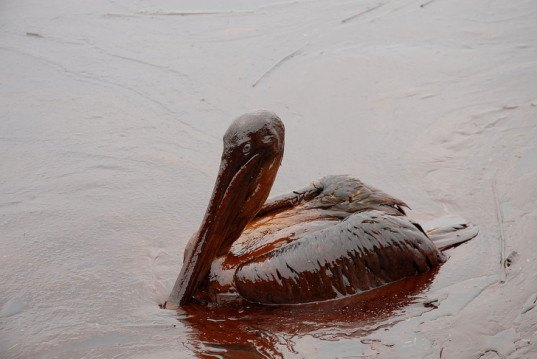 BP, Deepwater Horizon, Gulf of Mexico oil spill, oil rig disaster, worst offshore environmental disaster in US history, Judge Carl Barbier, Halliburton, Transocean, $18 billion in fines, Clean Water Act, Louisiana, BP grossly negligent under Clean water Act, BP faces $18 billion in fines