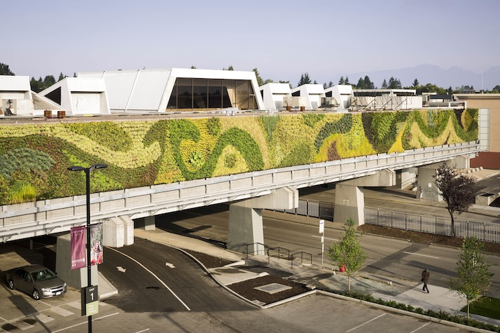 Watch incredible timelapse shows installation of north for Green wall vancouver