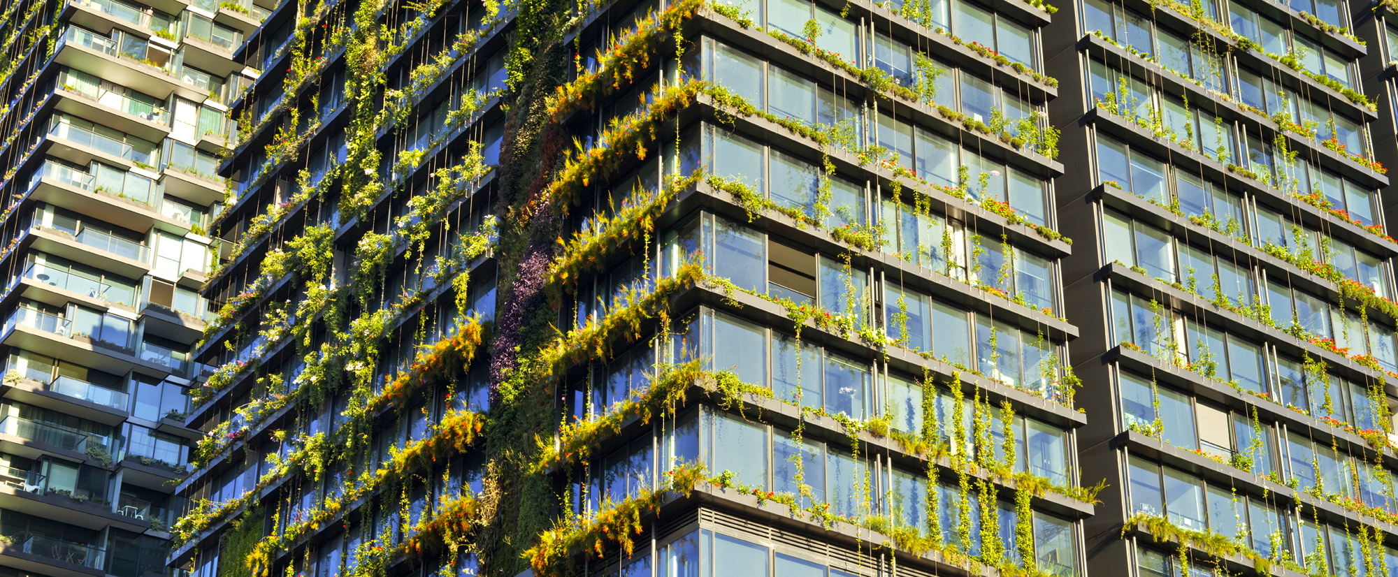 The World S Tallest Vertical Garden Lives And Breathes In
