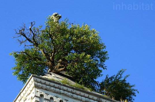 green roof, indiana, greensburg, tree in the tower, tree growing on the roof, greensburg courthouse tree, tower tree, rooftop tree, odd Americana, eco-travel, eco-tourism, tafline laylin