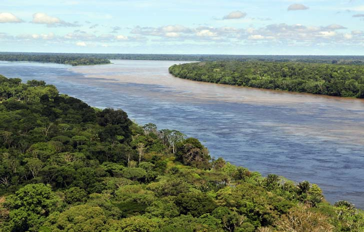 Industrial Giant Cargill Announces Promise to Stop Leveling Rainforests