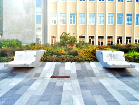 INTERSTICE Architects, University of San Francisco Center for Science, landscape architecture, green design, sustainable design, leed, native plants, stormwater, san francisco, interstice, landscape design, NBBJ, BKF, green roof, rainwater harvesting