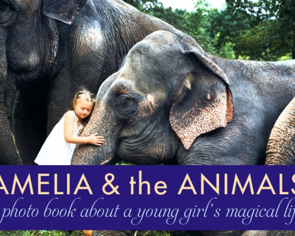 Robin Schwartz, Amelia and the Animals, Amelia Forman, animals photography, mother and daughter, amazing photos of animals, Kickstarter campaign, exotic animals, National Geographic photographer