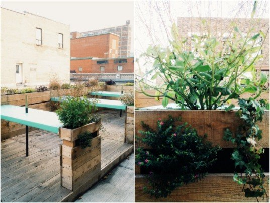 foraging, manitoba restaurant, green design, sustainable design, eco design, wild ingredients, renovation, recycled materials, recycled furniture, montreal, quebec, canada