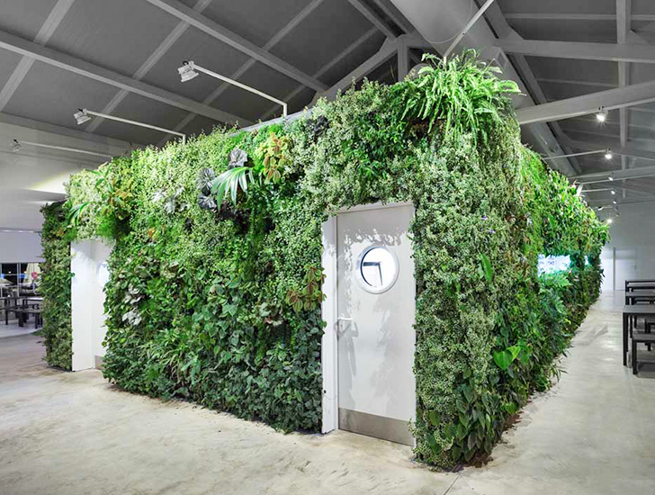 Flourishing vertical garden brings life and fresh air to for Vertical garden design