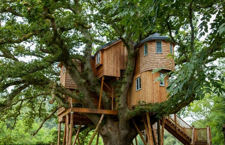 Live In Harmony With Nature In These Super Sexy Tree House