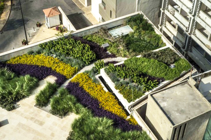 Green Studios Convert Bleak Beirut Rooftop Into A Gorgeous Living Garden
