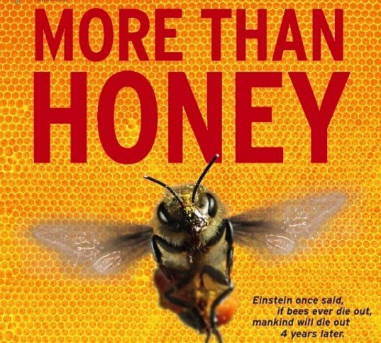 more than honey, more than honey movie, more than honey documentary, green documentary, environmental film, honey, bees, pollination, beekeepers, bee documentary film