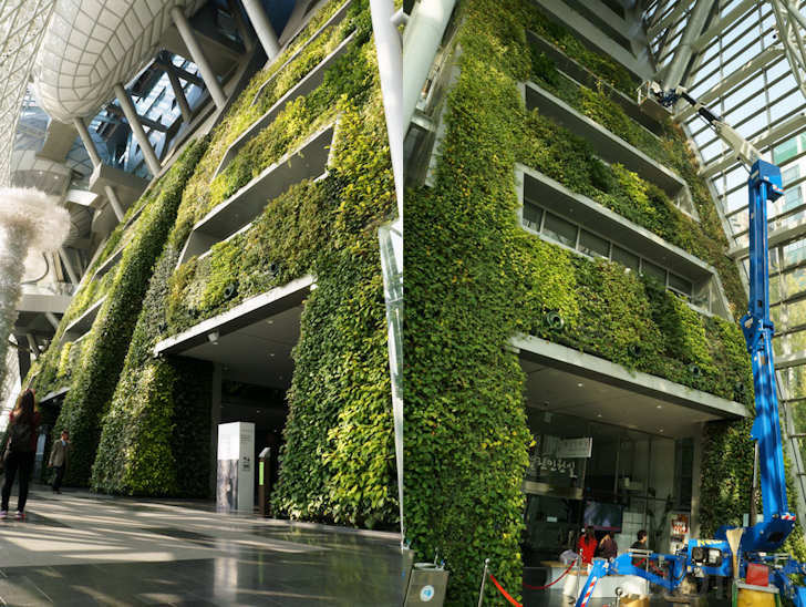7 Story Indoor Green Wall Is An Enormous Air Filter For