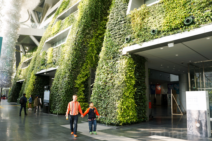 7 story indoor green wall is as an enormous air filter for for Green design company