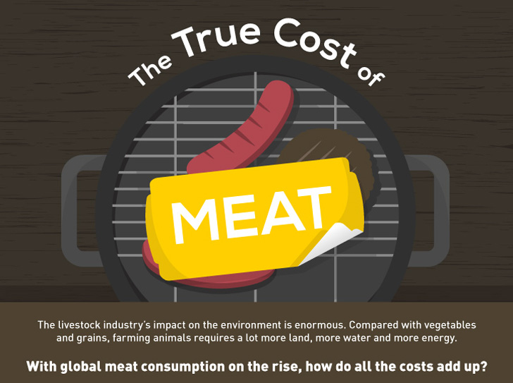 INFOGRAPHIC: The True Environmental Cost of Eating Meat