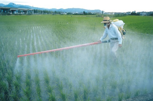 A Battle is Brewing in California Over State Pesticide Plan