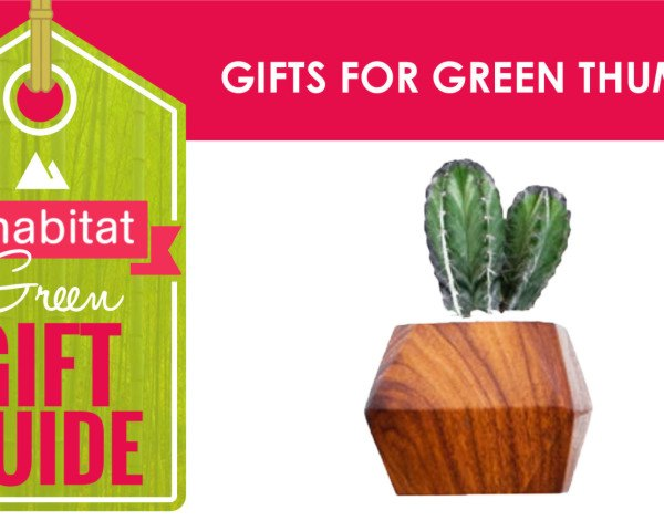 green holiday, green gift guide, green holidaygift guide, gifts for green thumbs, gifts for gardeners, plant gifts, eco friendly gardening presents, gardening gifts, gifts for gardeners, garden, gardeners, gardening, gardening presents, presents for gardeners, green thumb, green thumb gifts, garden gifts, gardeners
