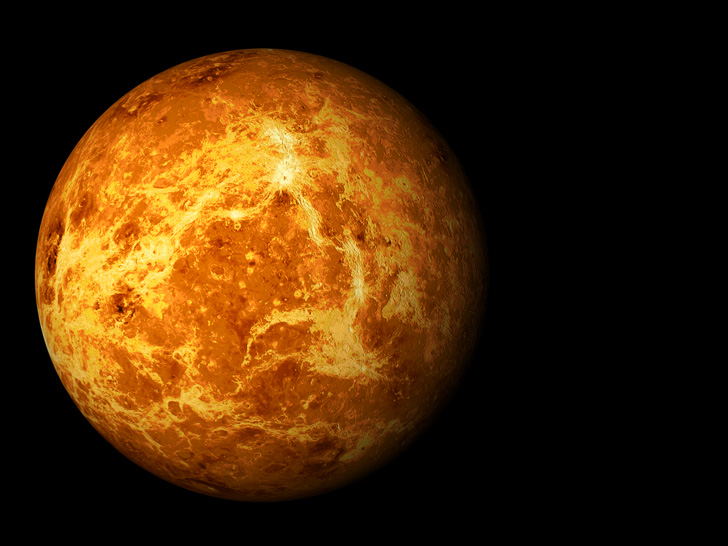 Is there life adrift in the clouds of Venus?