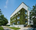 A crumbling Warsaw building gets a luscious new green face