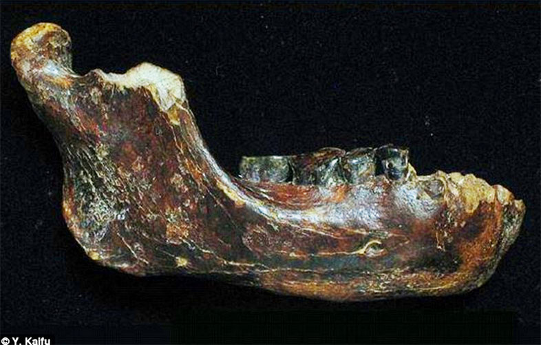 Did Scientists Just Discover A New Kind Of Ancient Human