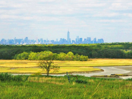 Freshkills-Photos-NYC-Skyline-lead