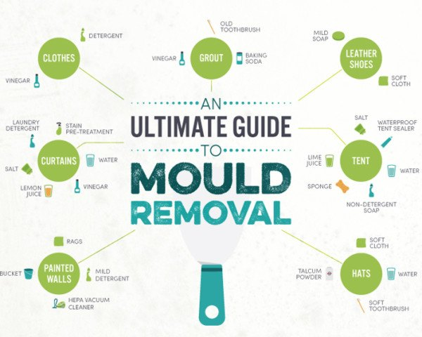 Infographic, mold, molds, mould, moulds, mildew, banish mildew