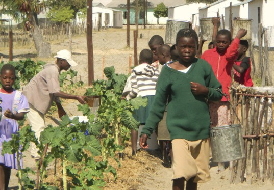 Studio Mada, Zimbabwe School, green education, mud brick construction, africa green building, africa sustainable architecture,