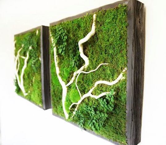 Artisan Moss Plant Paintings Effortlessly Bring The Beauty Of Green Walls Indoors