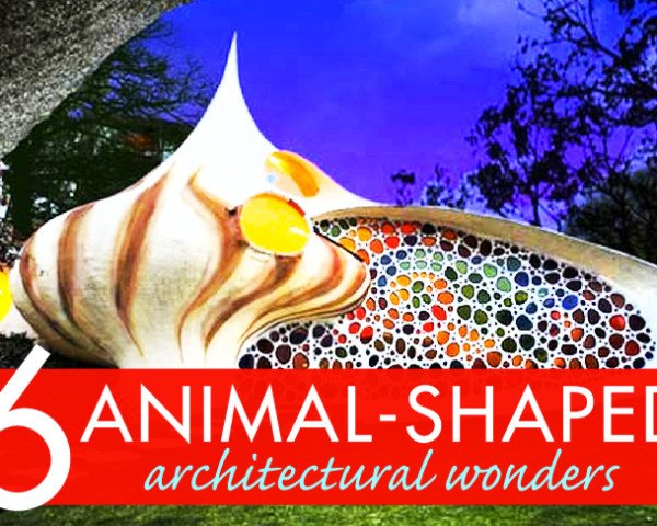 biomimicry, animal shaped buildings, buildings shaped like animals, biomimicry in architecture,