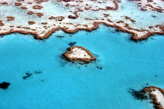 Heart Reef, Hardy Reef, Whitsundays, Whitsunday Islands, Whitsunday archipelago, Great Barrier Reef, Queensland, Australia