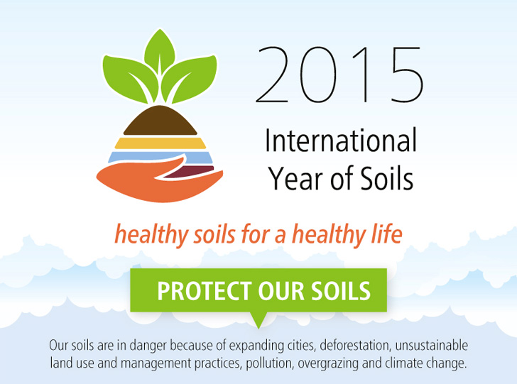 Infographic 2015 marks the international year of soils for Importance of soil for kids