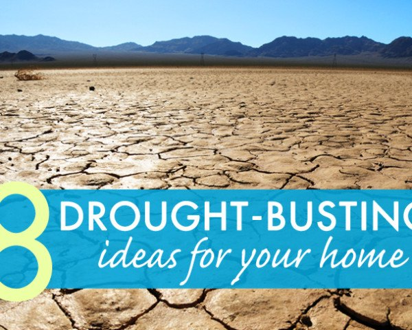 drought, california, water efficiency, water saving, epa, environmental protection agency, certification, watersense, water sense